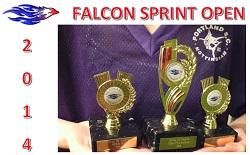 FalconSprint2014