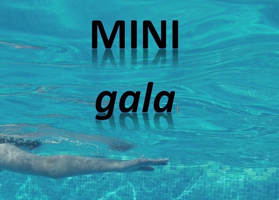 Mini Gala Pic