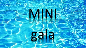 MiniGala logo